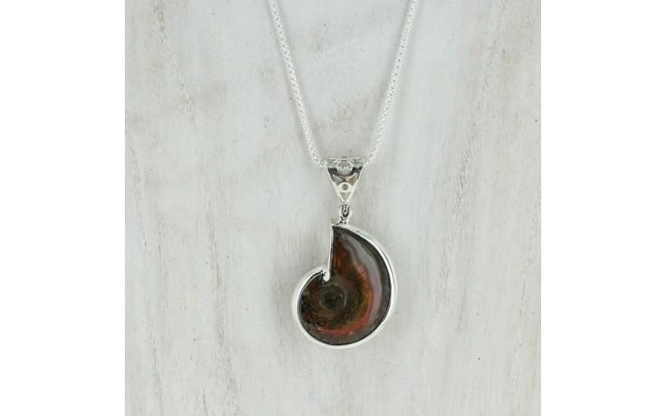Red Iridescent Ammonite Pendant with Chain